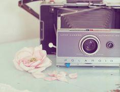 land camera polaroid