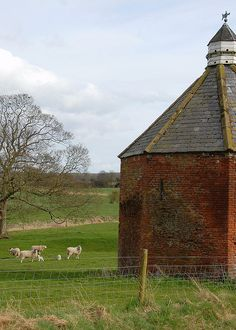 Dovecote and sheep