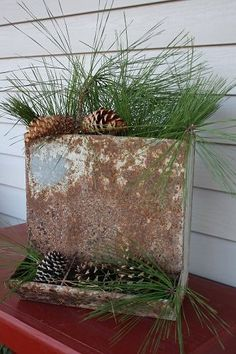 old galvanized feeder re-purposed into container for greenery