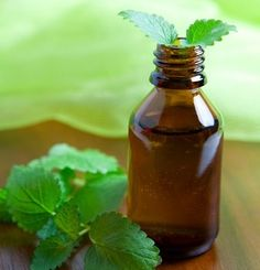 25 Uses for Peppermint Essential Oil. Peppermint has a strong, clean and fresh aroma. It has a long tradition of medicinal use and is one of the most versatile essential oils. Click here to read about it's various uses.