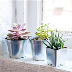 P.S.-I made this...Chrome Planters @krylonbrand