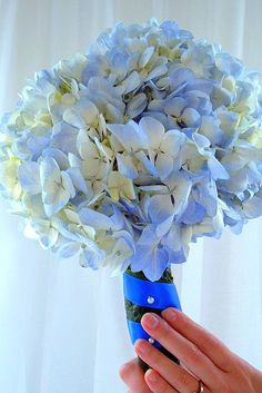 just add your pin and perfection blue hydrangea, bouquet blue, bridesmaid flowers, favorit flower, bouquets, hydrangea wrappng, blues, hydrangeas