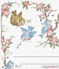 Bird Frame