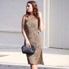 Cheetah Vibin' #maxxinista