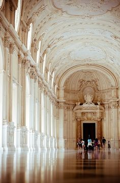 Palace of Venaria ( Venaria Reale ), Turin, Italy