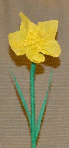 Papír nárcisz - Március 8.- Nemzetközi Nőnap - virág - papír