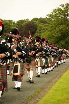 This is the pipe band at Floors Castle's massed piped bands day.
