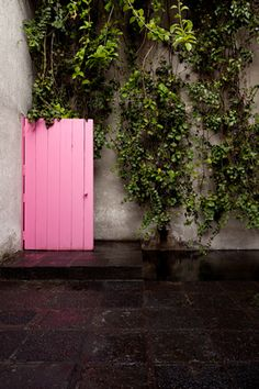 A visit to Luis Barragan House