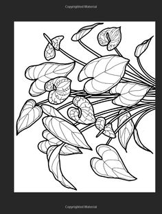 Tropical Flowers Stained Glass Coloring Book (Dover Nature Stained Glass Coloring Book): Carolyn Relei, Coloring Books, Flowers: 9780486297804: Amazon.com: Books