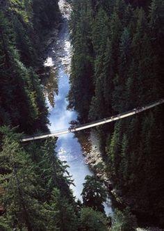 Amazing Capilano Suspension Bridge. Vancouver, BC    Did this with my great grandmother Olga :)