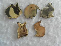 Bunny Felt Board poems