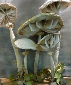 best-window-displays_anthropologie_2013_fall_mushroom_05
