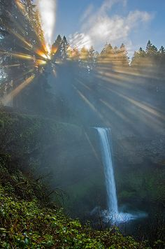 A foggy Silver Creek falls state park in Oregon, USA