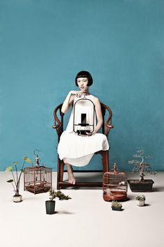 photographi inspir, product design, urban cage, jardim urbano