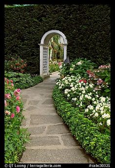 Arched entrance  leading to the Italian Garden. Butchart Gardens, Victoria, British Columbia, Canada Hedg, Secret Gardens, Garden Paths, Italian Garden, Walled Garden, Flower Beds, British Garden, Butchart Gardens, British Columbia