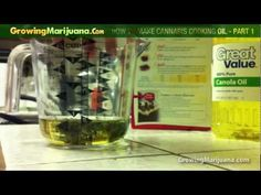 Cooking With Weed - How To Make Cannabis Cooking Oil - Part 1 http://growingmarijuana.com/