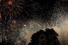 parks, fireworks, firework photo, jenna park, 4th firework, photography, park photographi, amaz firework