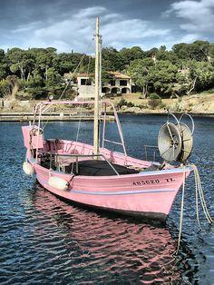 A PINK sailboat