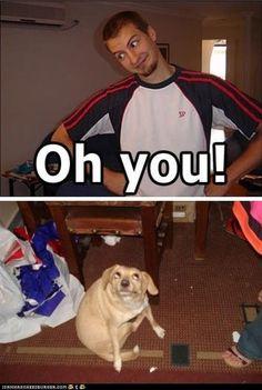 this makes me laugh so hard!!