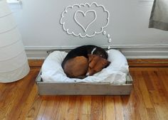 Are you looking for a bed that the smallest member of your family can be comfortable in? Look at this pin for directions on how to make a dog bed that your pet will love.