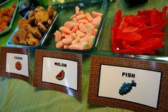 Photo 7 of 39: MineCraft / Birthday Minecraft Birthday Bash | Catch My Party