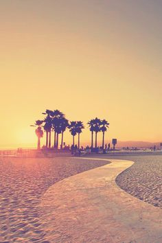 Beach sunsets in Venice