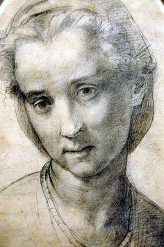 Andrea Del Sarto - Head of a Woman  c.1515