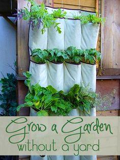 Such a good idea! Grow a Garden without a yard.