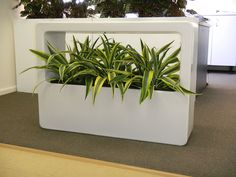 Stack this modular system to make an instant partition in your office. See more about vertical gardens at www.greendesign.com.au