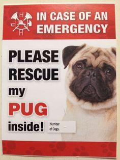 Vinyl Pug Rescue Emergency Fire House Window Stickers