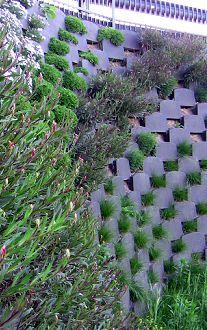 retaining wall grows in va on pinterest living walls retaining