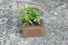 This simple planter is so easy to make. It would be a great DIY project if you're new to woodworking. But experienced DIYers will like it, too. Follow along with blogger Erin from DIY on the Cheap as she takes you step by step through the process. || @erinspain