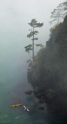 san juan island mystical fog