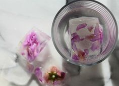 diy rose ice cubes petals
