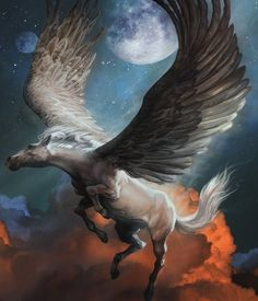 More Mystical, Mythical, Magical Board: Pegasus