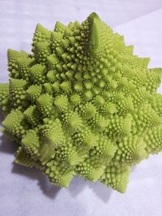 Vegetable like a Mandelbrot fractal ?     Fast  Easy Tips for Weight Loss Health Fitness. ... In fact this is one of the most rapid weight loss tips that the dieticians suggest to the people.  makeyourbodyfit.com