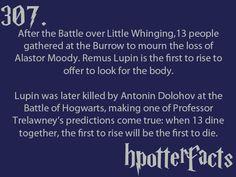 Lupin <3