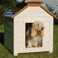 How to Build a Dog House #stepbystep