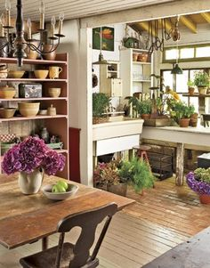 Indoor garden space off the kitchen. Now this, I would like!