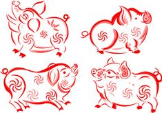 Chinese New Year - Year of the pig