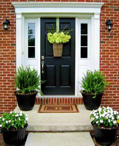 Potted plants and hanging plant for front door