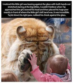 awww... how cute!