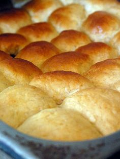 Potato Dough Rolls