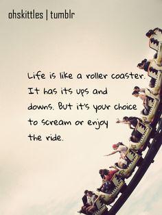 life. scream, or enjoy the ride.