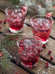 Blueberry Lavender Vodka Spritzer | Recipe