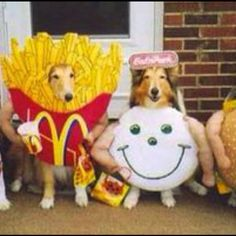 Pups dressed as food.  So cruel yet adorable.