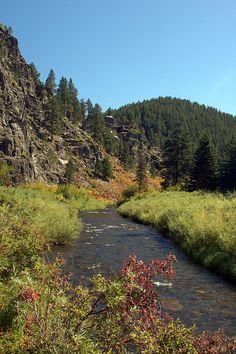 Silver City trail, Black Hills, South Dakota