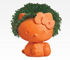 Hello Kitty Chia Pet