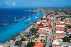 """Melhor Caribe Mergulho (Bonaire). """"Quase toda a costa de Bonaire é cercado por alguns dos mais saudáveis recifes de coral da região. Às vezes parece que a metade da população da ilha são mergulhadores - e por que não deveriam ser? Os recifes Unesco-reconhecidos costa pode ser alcançado logo depois convés do seu quarto de volta em grande quantidade de baixa-chave mergulhador hotéis de gerência."""