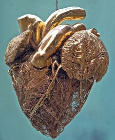 From Dr. Gunther von Hagens' plasticized museum, a gold-plated cow heart clearly displays the structure of the blood vessels.